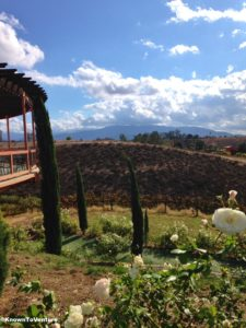 Stunning view from Falkner Winery, Temecula, CA www.knowntoventure.com