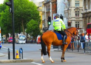 A mounted policeman in London. www.knowntoventure.com