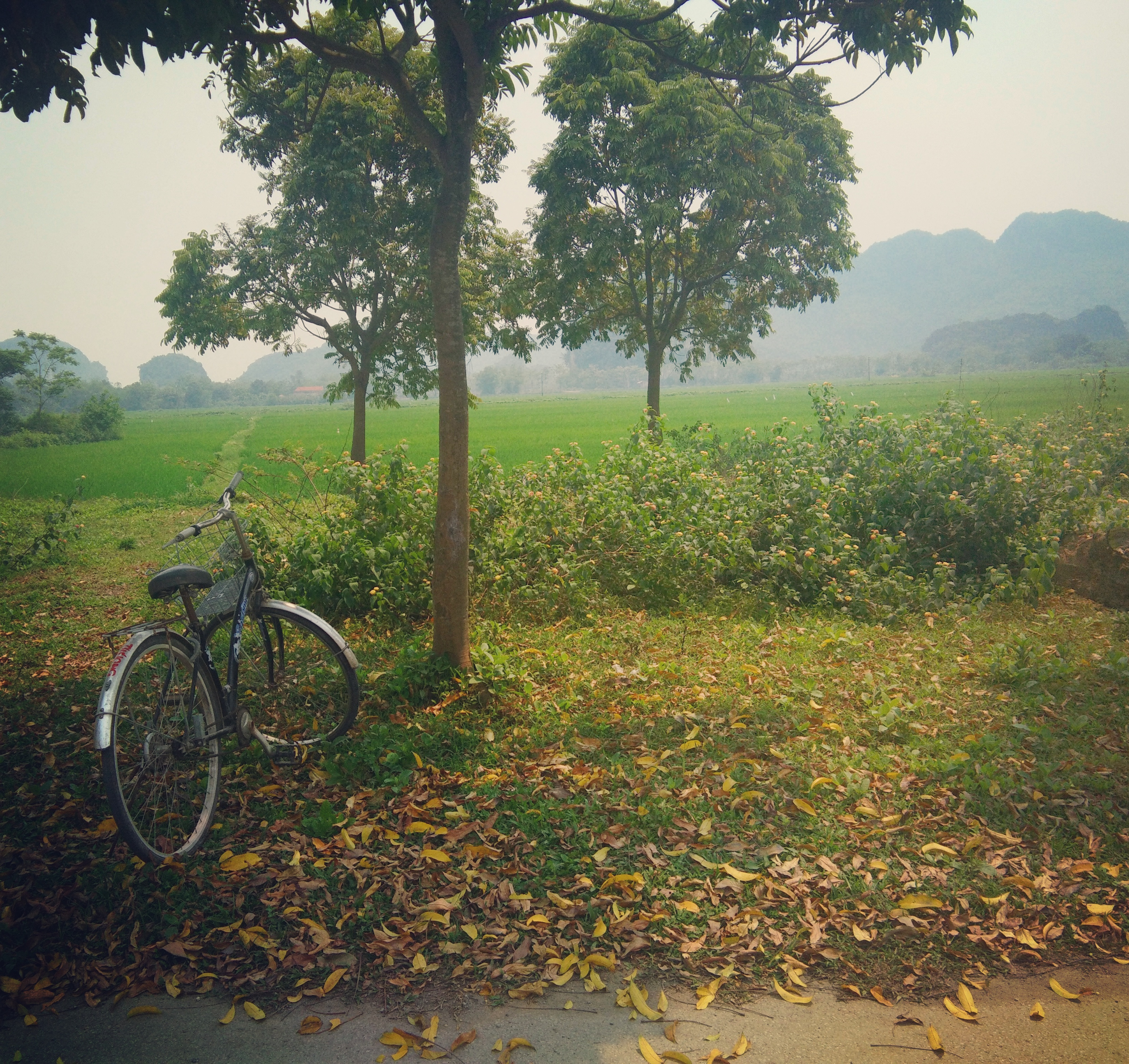 Leisurely explore the majestic Tam Coc by bike. Vietnam www.knowntoventure.com
